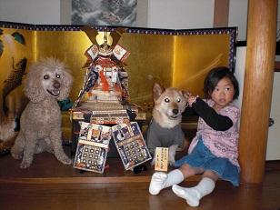 kabuto1_20100504185359.jpg