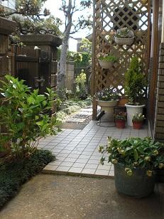 niwa2_20110501090814.jpg