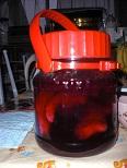 syouga1_20100619085154.jpg