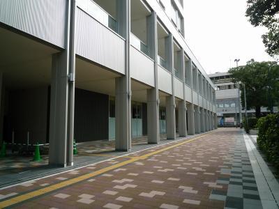 201009wakakusa-10.jpg
