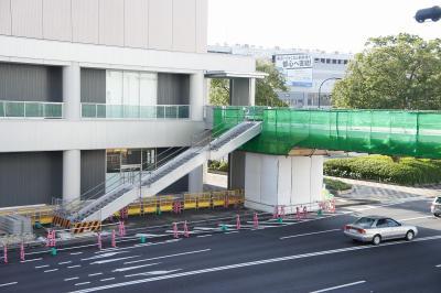 201012wakakusa-7.jpg