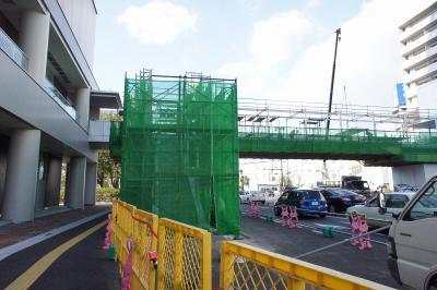 201101wakakusa-13.jpg