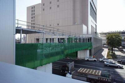 201101wakakusa-5.jpg