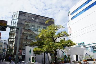 201110takarazuka-(8).jpg