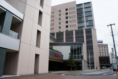 201110wakakusa-1.jpg