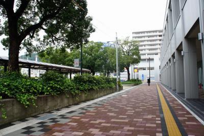 201110wakakusa-3.jpg