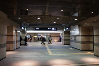 201202kamiya-18.jpg