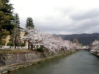 okazaki_100402_13.jpg