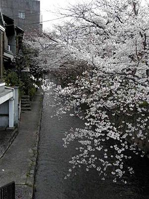okazaki_100402_17.jpg