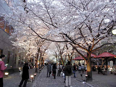sinbashi_100401_1.jpg