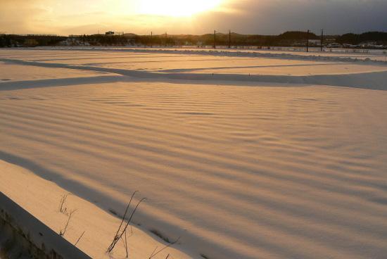 110108 朝日の雪原