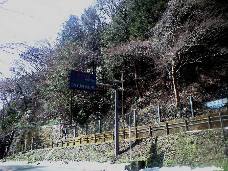 20100313-3.jpg