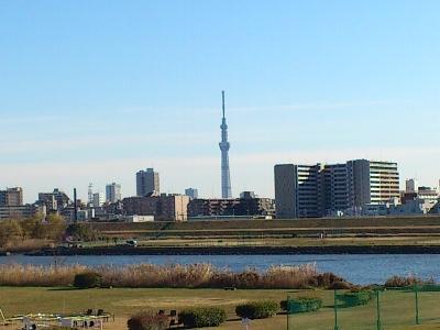20111227-1.jpg
