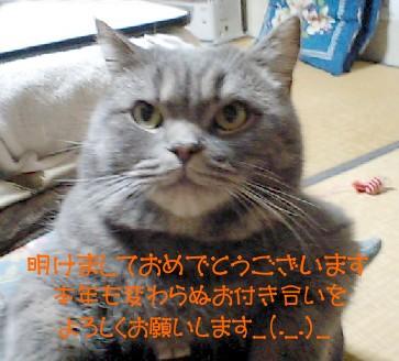 20120103ブログ
