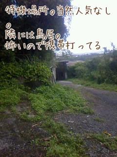 s_201002161509084b7a368434dc4.jpg