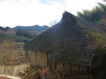 カヤの屋根
