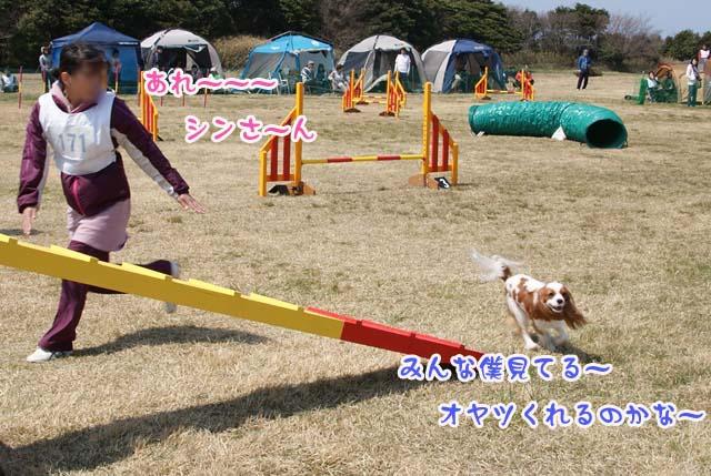 20120408_171.jpg