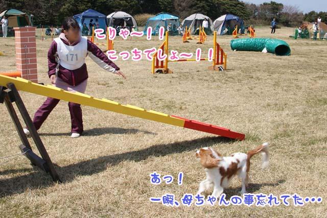20120408_173.jpg