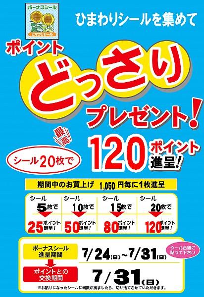 2011_0729_001.jpg