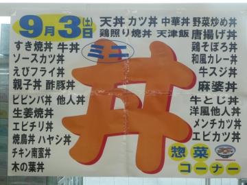 2011_0902003.jpg