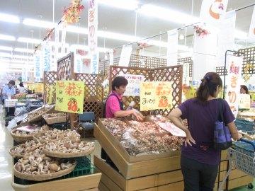 2011_0910_007.jpg
