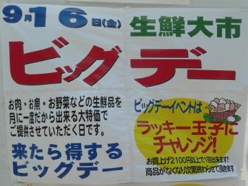 2011_0914002.jpg