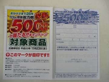2011_1114007.jpg