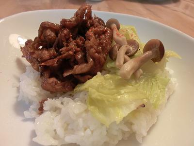 ソース豚丼