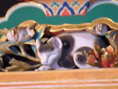 眠り猫-1