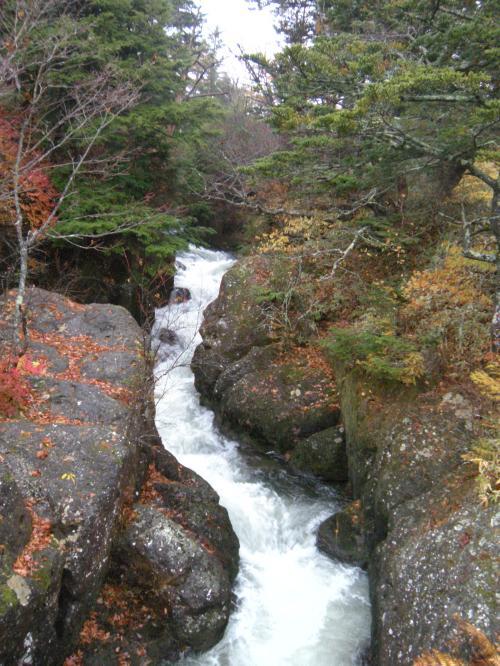 竜頭ノ滝の反対
