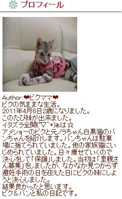 2011y06m26d_093532024-1.jpg