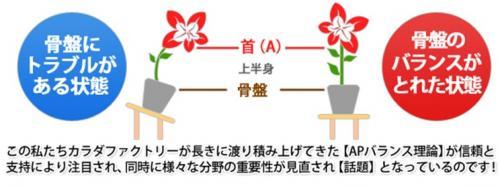 2011y11m07d_112659648_convert_20111107113052.jpg