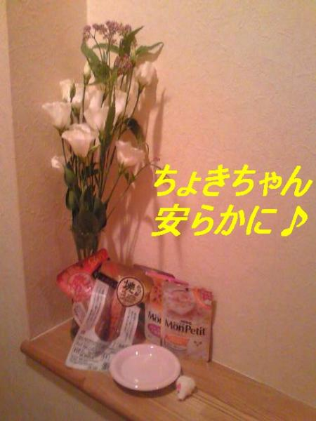 Image2511_convert_20100903161856.jpg