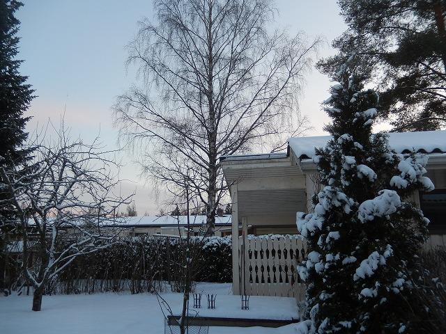 フィンランドの12月