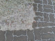 粉砂糖の地面