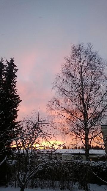 11月の夕景