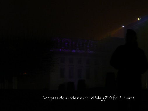 New year 2011 (3)