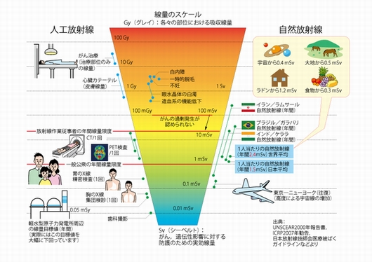 放射能と健康