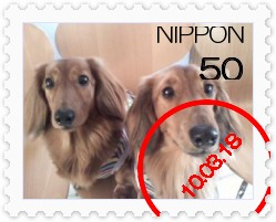 [stamp18235934]P2010_0314_131837