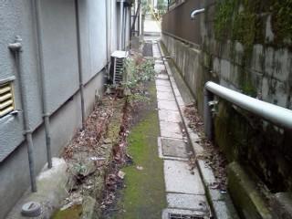 kamiike-ankyo5.jpg