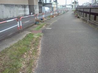 ookura-ankyo-gouryuu.jpg