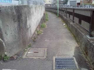 ookura-ankyo3.jpg