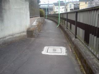 ookura-ankyo4.jpg