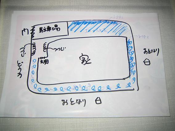 IMG_20130531_0004_1.jpg