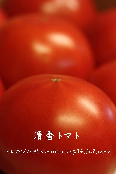 130208_5.jpg
