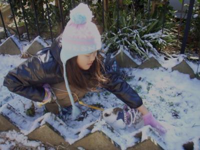 2011-01-16初雪