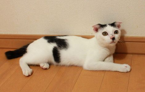 0825norishio1.jpg