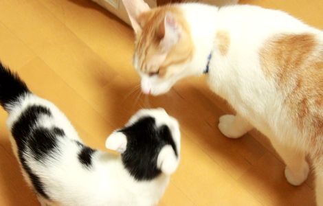 0829norishio4.jpg