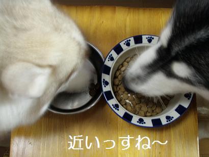 2010-4-29朝ごはん?
