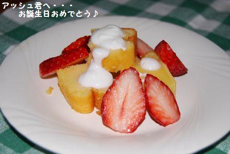 2010-2-13blog4.jpg